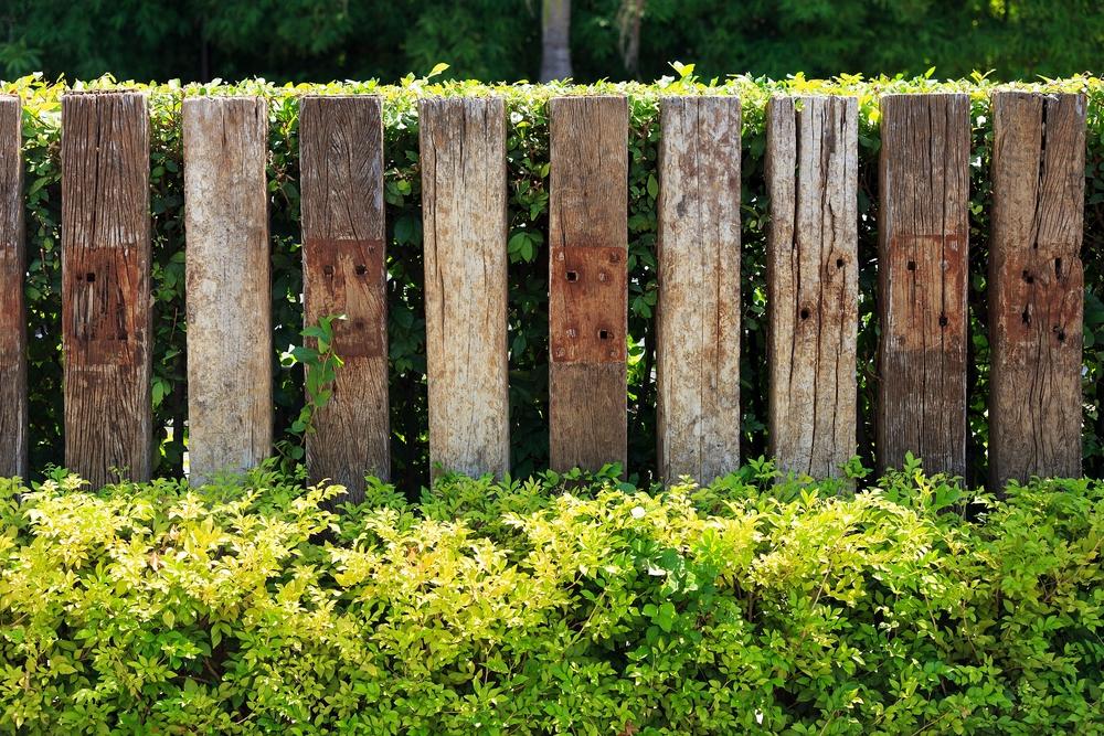 Palisaden – mehr als nur ein Zaun